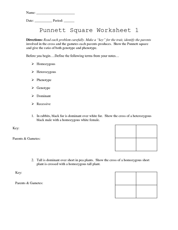 Worksheet Protein Synthesis Activity Worksheet biology daily news 2 11 15 students will be reviewing punnet squares and pedigrees given an assignment to prepare for tomorrows quiz